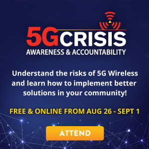 The 5G Crisis