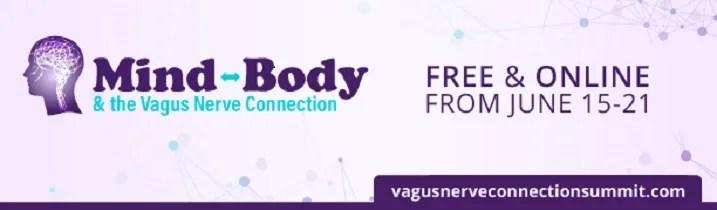 the vagus nerve connection