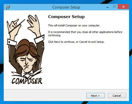 Composer-Setup wizard launched