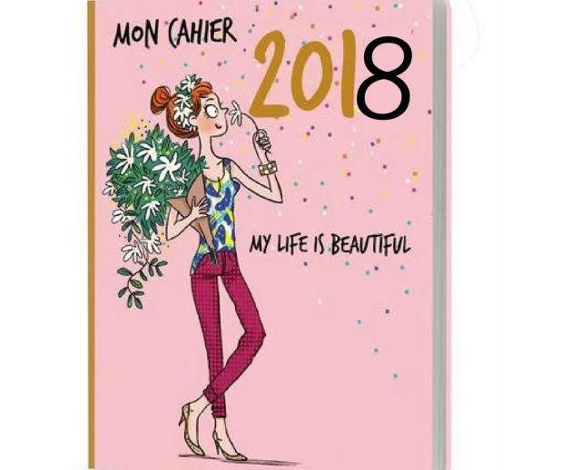 2018 Budget Journal