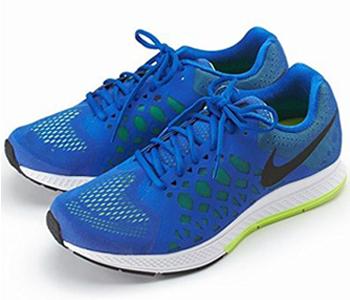 Nike Zoom Pegasus 31 for Men