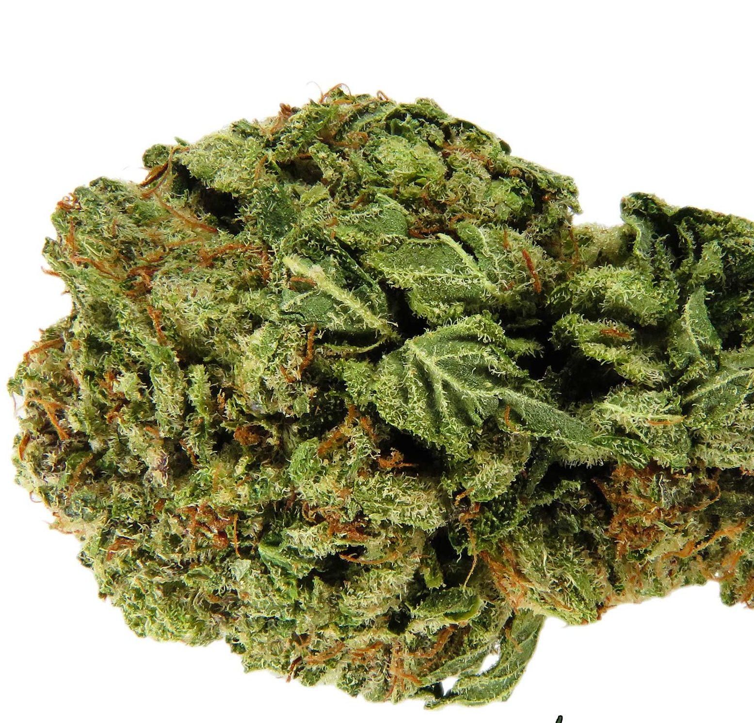 Frosty Marijuana Strain from Prom 710 - Mail Order Marijuana