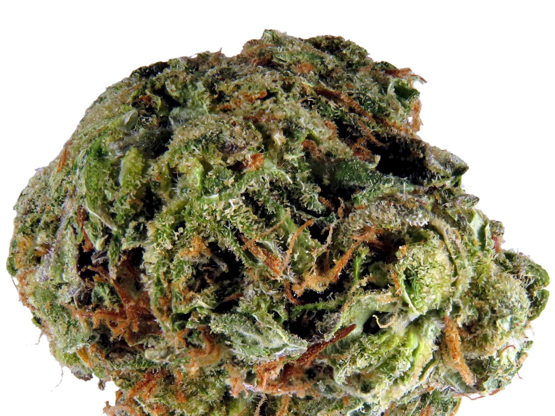 Citrus Skunk Marijuana Strain by Pure 710