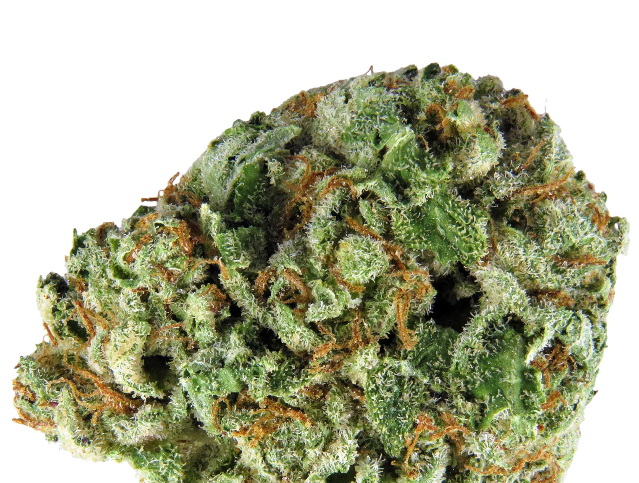 Diamond Og Marijuana Strain Pure710