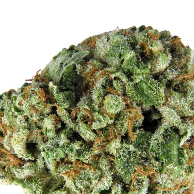 Diamond Og Marijuana Strain Pure710