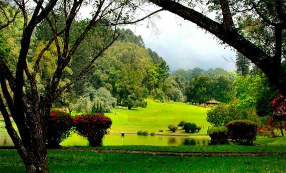 Kebun Raya Cibodas - Tempat Wisata di Bogor