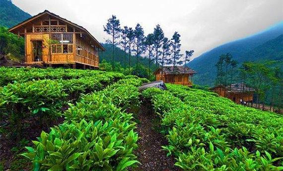 Agro Gunung Mas - Tempat Wisata di Bogor