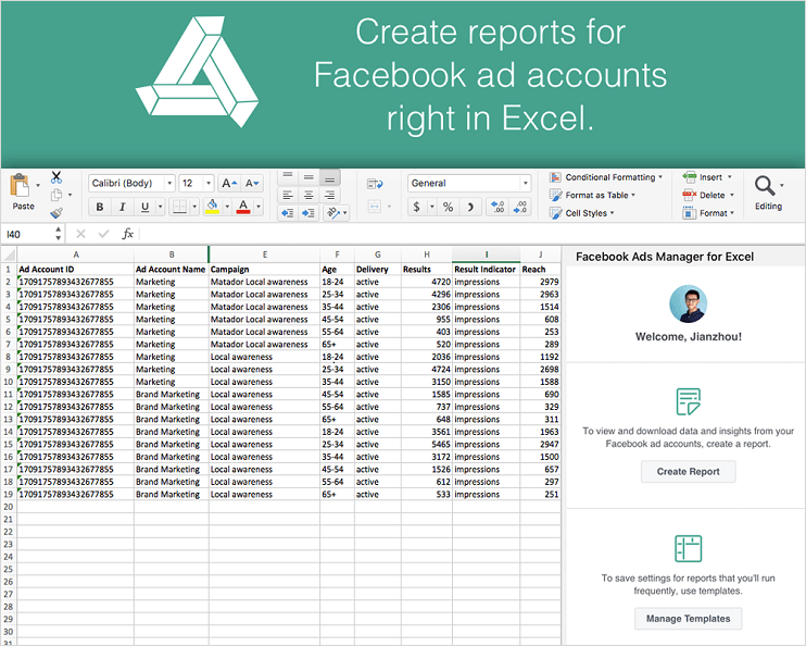 Facebook Ads Manager for Excel