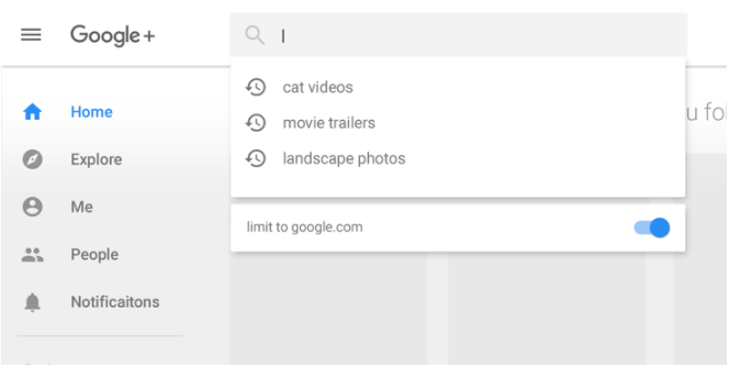 Google+ in domain filter