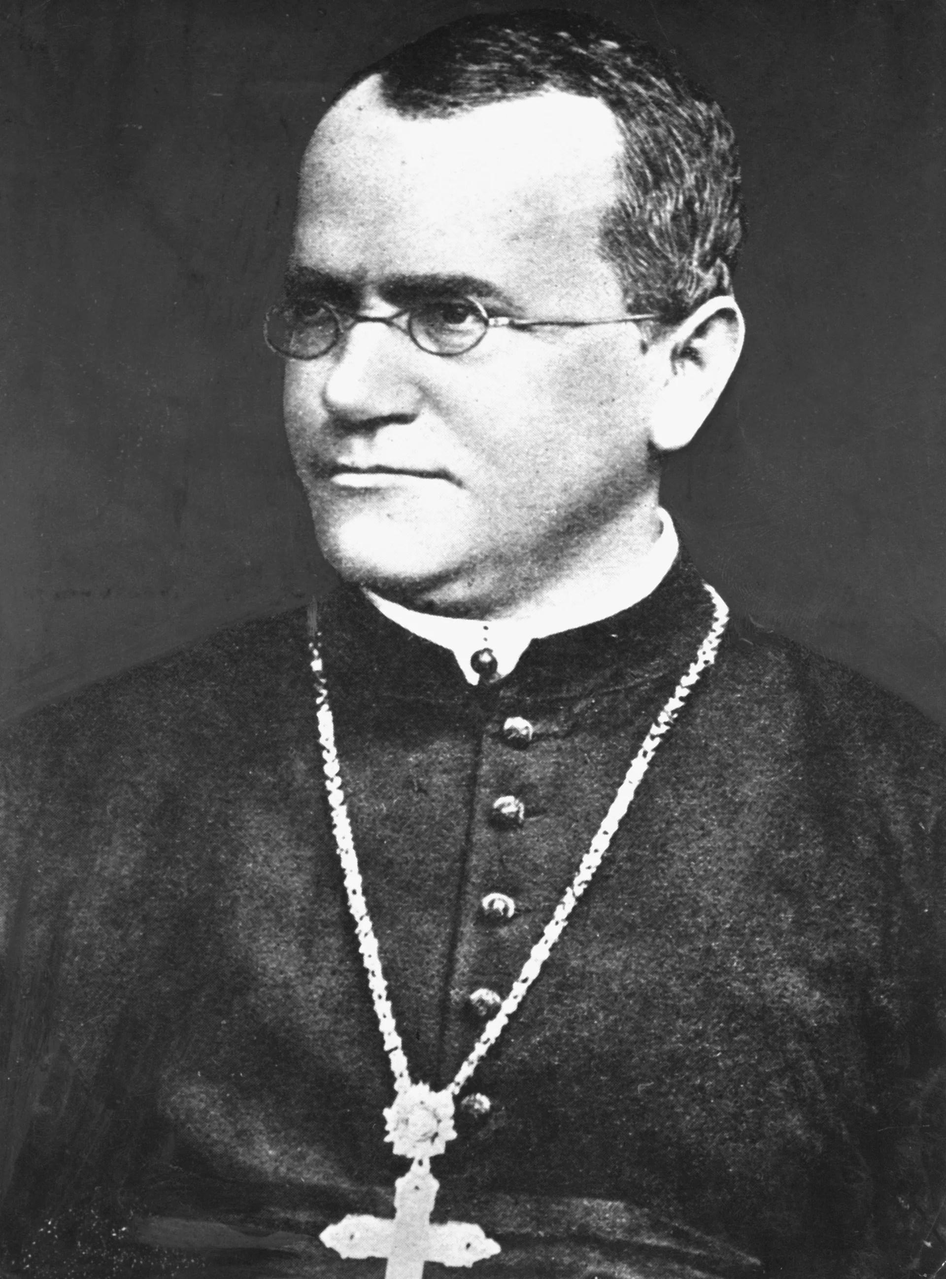 Who Is Gregor Mendel