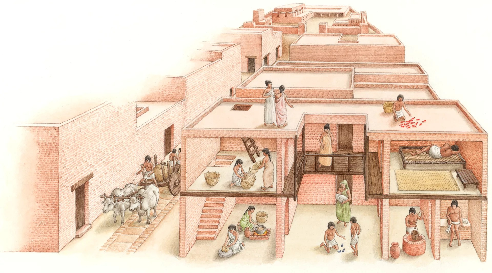 Indus Valley Civilization Houses And Buildings