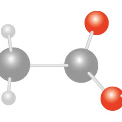 Sodium Atom Diagram 92 Ford Ranger Wiring What Is A Molecule | Molecules For Kids Dk Find Out