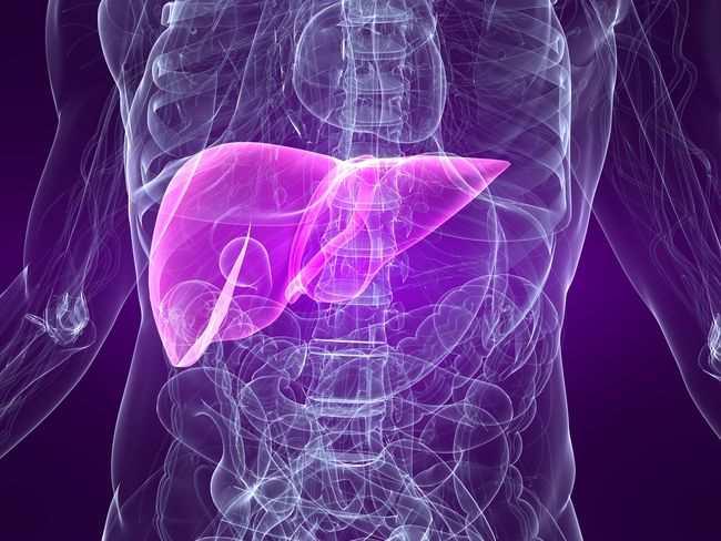 Hepatitis B - Gejala, penyebab dan mengobati - Alodokter