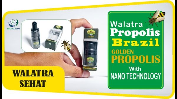 Harga Resmi Walatra Propolis Brazil
