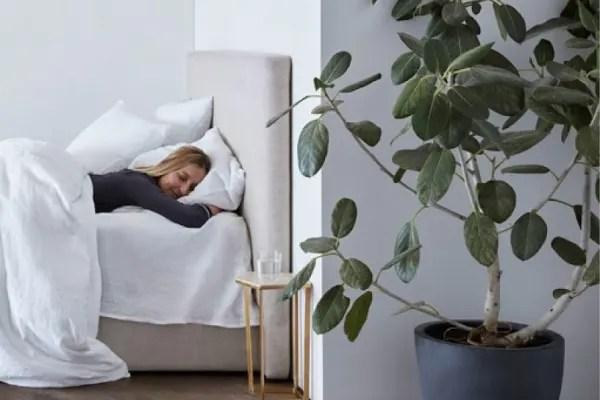 reddit on sleep 15 science backed tips