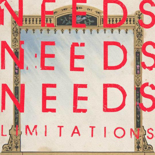 NEEDS - Limitations