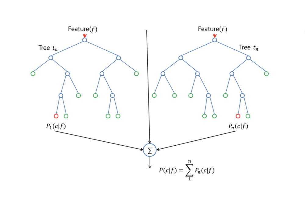 medium resolution of the split is allowed to use only one of those m predictors this is the main difference between random forests and bagging because as in bagging