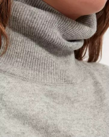 The Cashmere Turtleneck Dress - Everlane
