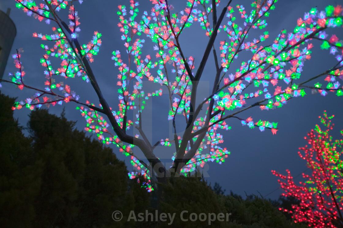 Tree Lights Outside A Hotel In Incheon Seoul South Korea