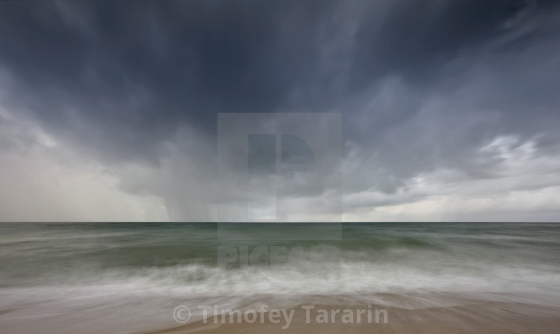 Monsoon License Download Or Print For 12 40 Photos