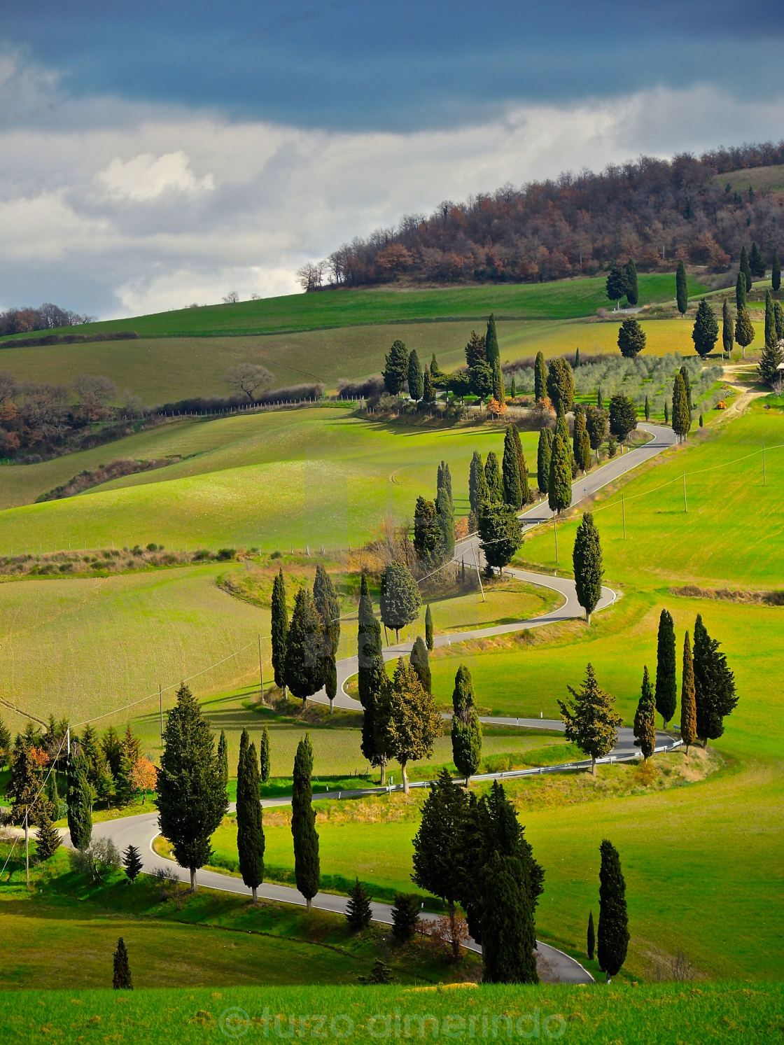 Paesaggio toscano strada con cipressi  License download or print for 248  Photos  Picfair
