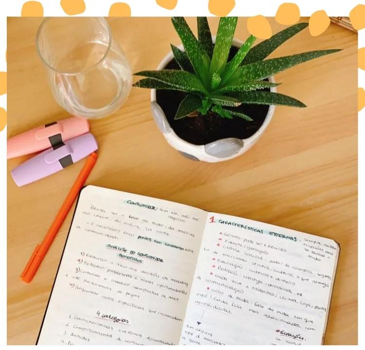 Foto com moldura branca e poá oversized. A foto é uma mesa de madeira com um moleskine aberto, caneta laranja, marca-texto rosa pastel e lilás, copo de água e vaso com suculenta verde.
