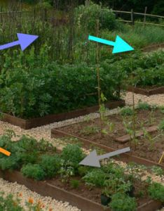 also easy crop rotation using the colors of rainbow rh growveg