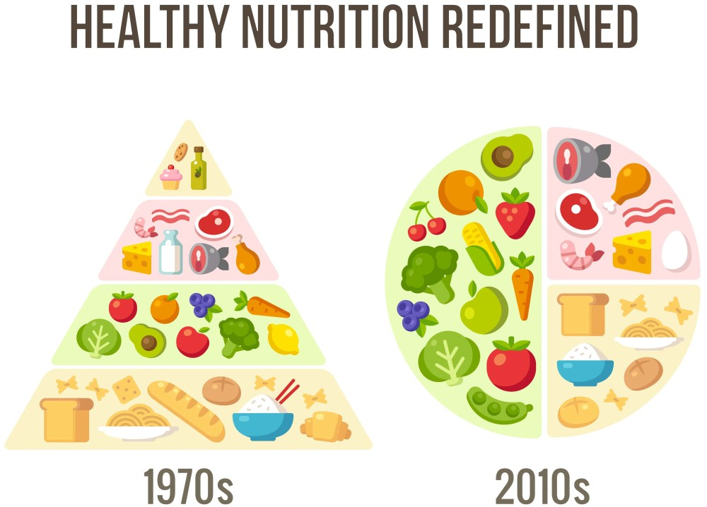 medium resolution of the updated chart isn t cluttered with images of the food types themselves and my plate is more transparent than the original pyramid