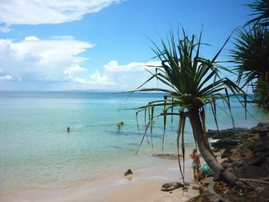 Image result for noosa heads