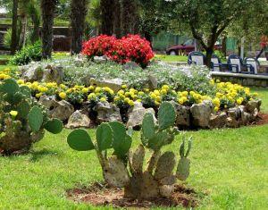Ein mediterraner Steingarten ist eine dekorative Alternative zur einfachen Rasenflche