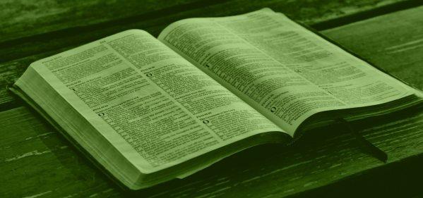 CRIANÇA É COISA SÉRIA!                                 reedição da pastoral de  09/10/2011 2