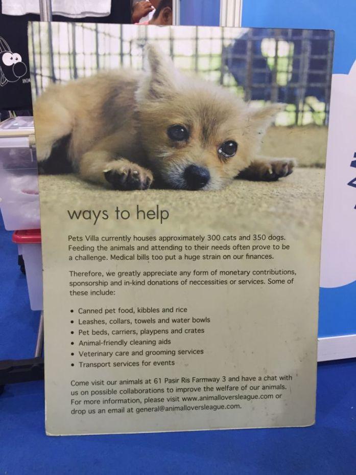 singapore-pet-expo-2015-419