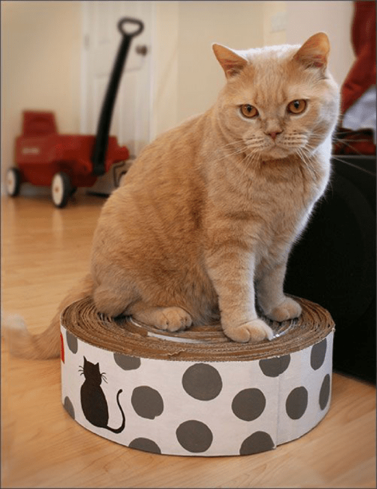 diy scratch pad