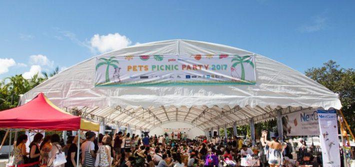 PETS picnic 2017