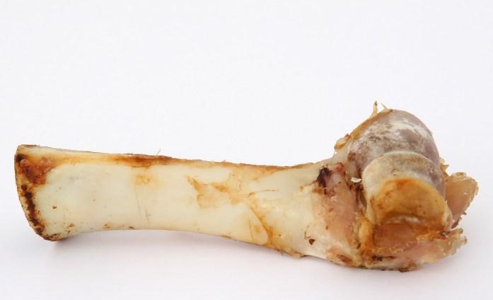 Raw Bone