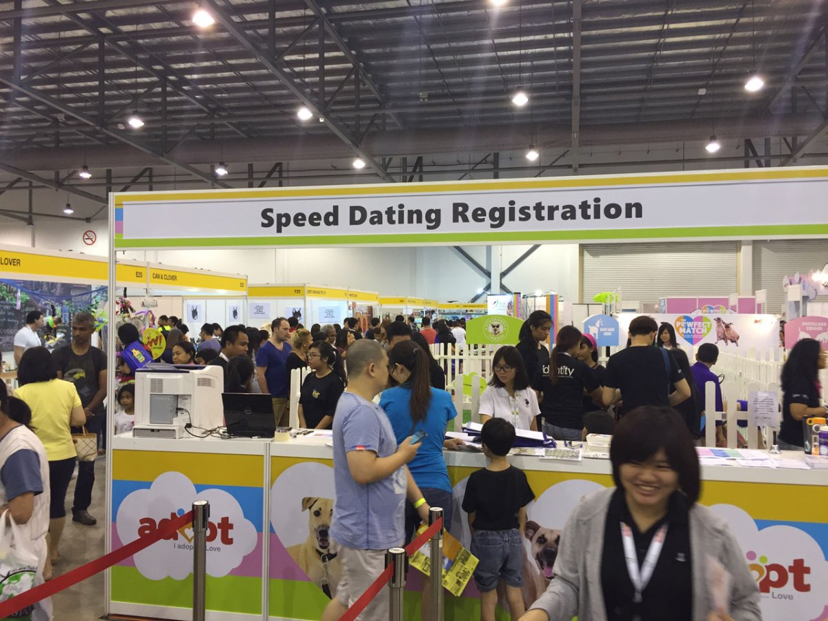 speed dating kz