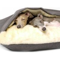 Charley Chau Luxury Weave Snuggle Dog Bed From 100.00 ...