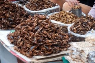 insecte cambodge phnom penh de central market