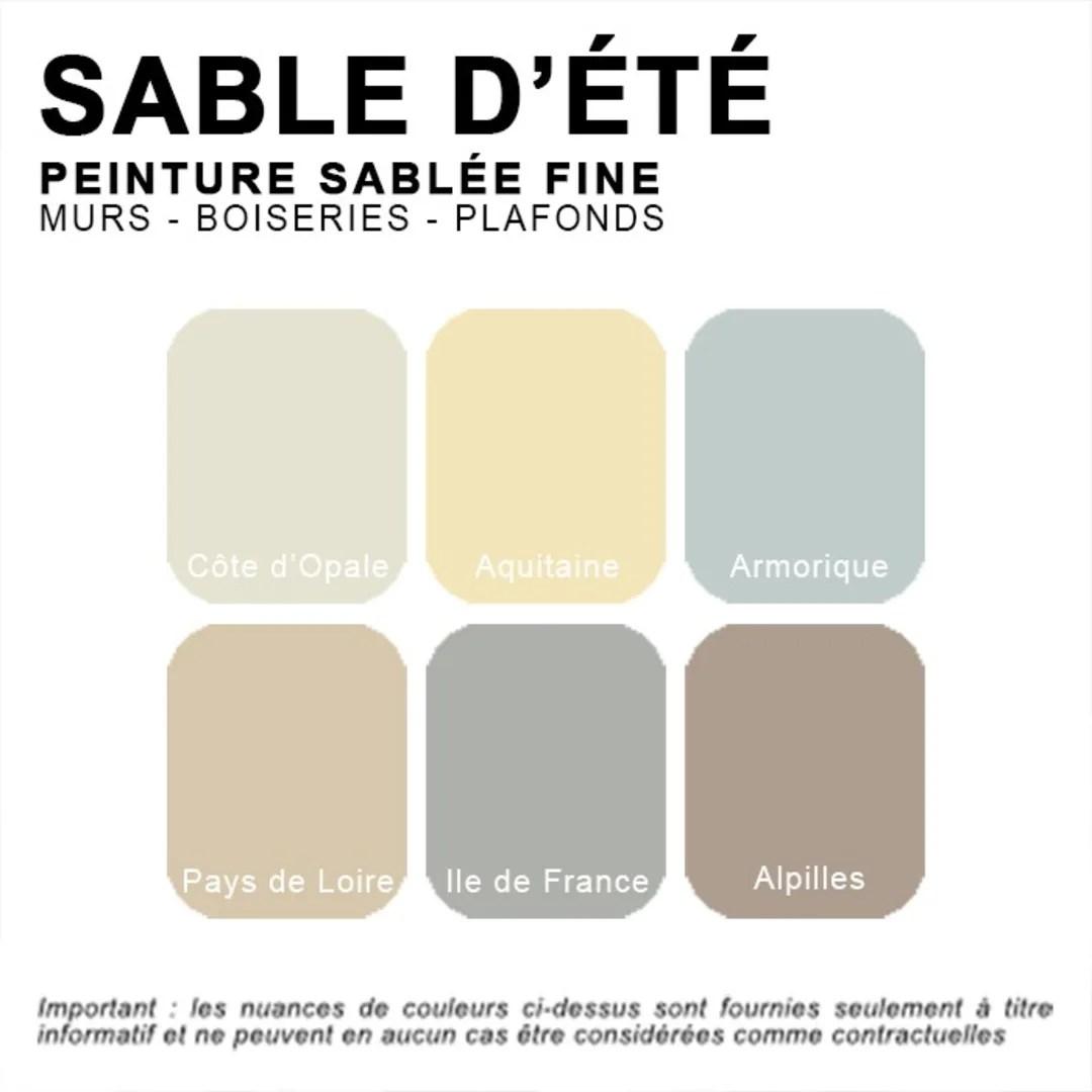 Peinture Sablee Depolluante Pour Murs Plafonds Et Boiseries