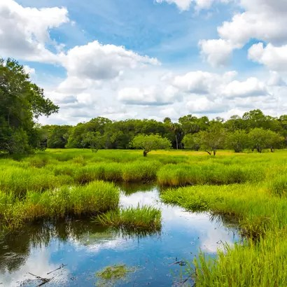 preserving natural landscapes