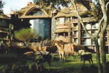 Disney' Animal Kingdom Lodge Ocean Florida