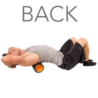 Foam Roller - Muscle Roller for Physical Therapy & Massage ...