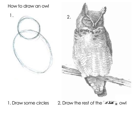 """1. """"Draw some circles."""" 2. """"Draw the rest of the &$%# owl"""""""