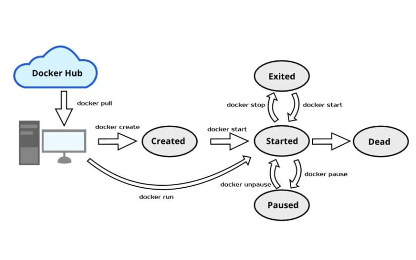 Docker container lifecycle