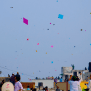 Why Is Kite Flying Day Celebrated In India Qurito
