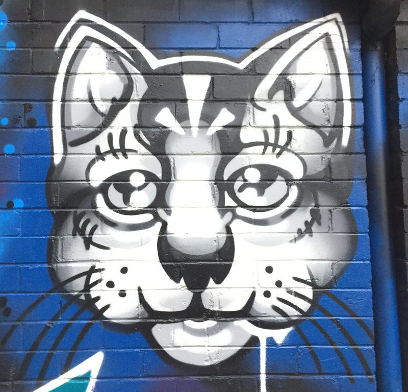 Crazee Cats Graffiti / Red Wolf