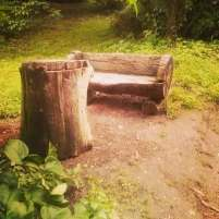 #vizitainhd La o masă, odinioară stăteau doi oameni singuri. Foto Parcul Dendrologic Simeria - o bijuterie