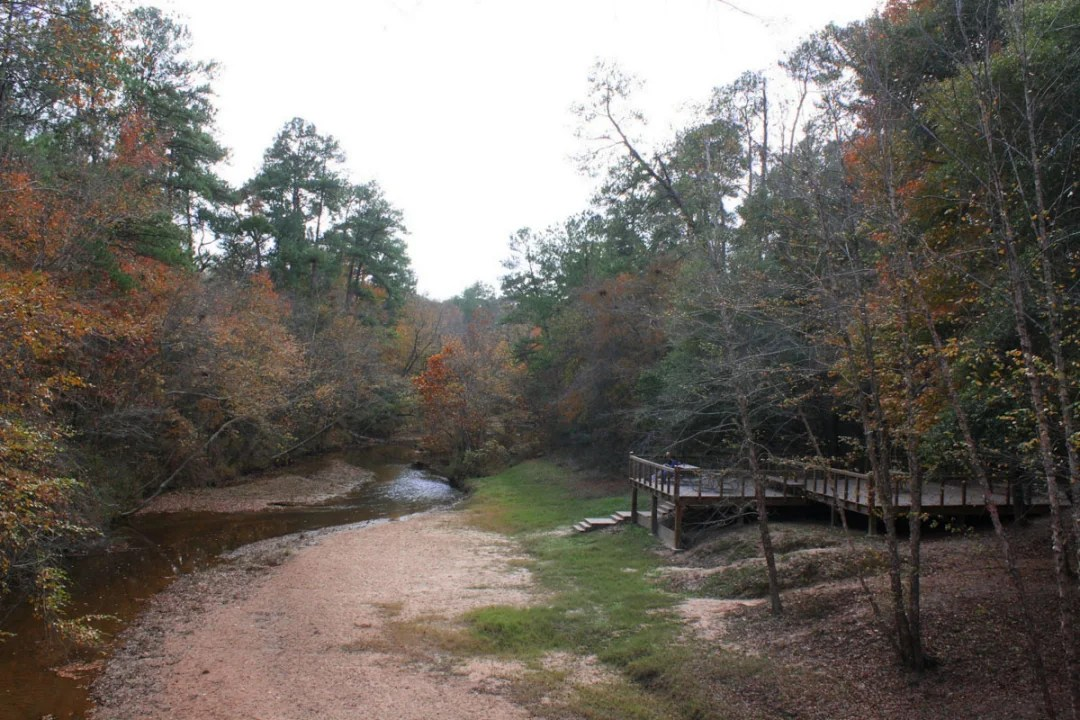 Get Out Stay the Night at the Lake Houston Wilderness