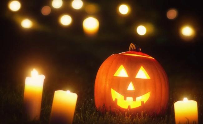 Your Guide To Halloween In Sarasota 2017 Sarasota Magazine