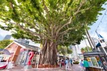 Bayside Marketplace In Downtown Miami Area Brickell